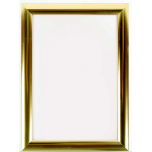 A0 Polished Gold 25mm Snap Frame