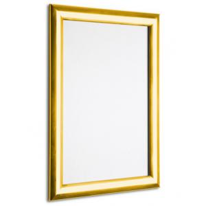 Shiny Gold Snap Frames